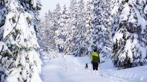 Turåkning på turskidor Lofsdalen.