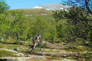 Hyr cykel Rent bicycle Karins Sportbod Lofsdalen.